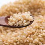 犬に玄米を食べさせても大丈夫? アレルギーや与え方について